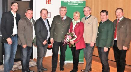 Martin Preineder - Baunerräte