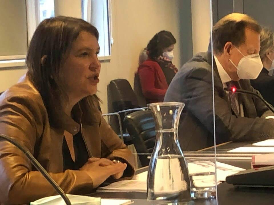 EU Ausschuss des österreichischen Bundesrat - Bericht Mag. Helga Berger
